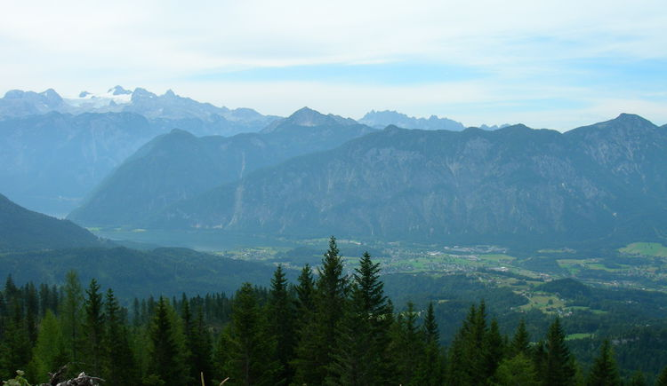 Enjoy this amazing view along the Raschberg Loop. (© OÖ Tourismus / green-solutions)