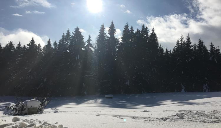 Landschaft im Winter 2 (© Privat)
