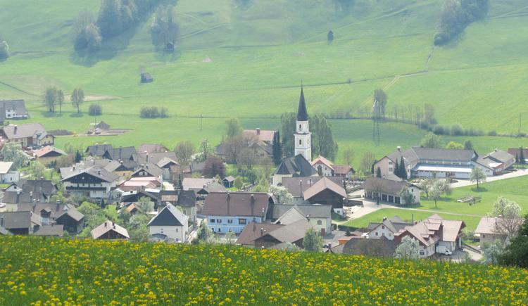 Blick von der Wiese auf die Gemeinde Oberwang, mit Kirche