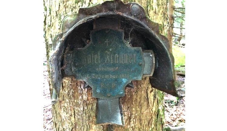 Blick auf ein Gedenktafel an einem Baumstamm