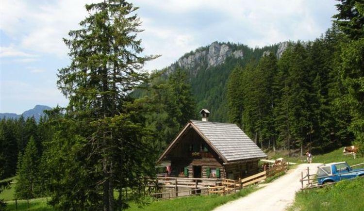 Vom Parkplatz Berghotel Predigstuhl ist es nur ein 30minütiger Fußmarsch bis zur Rossmooalm.