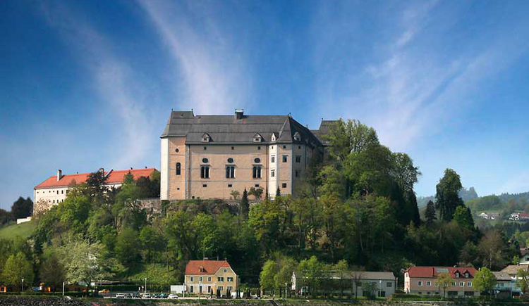 Blick auf Schloss Greinburg an der Donau (© TV Grein)