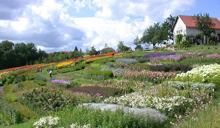 Garten der Geheimnisse in Stroheim. (© Garten der Geheimnisse)