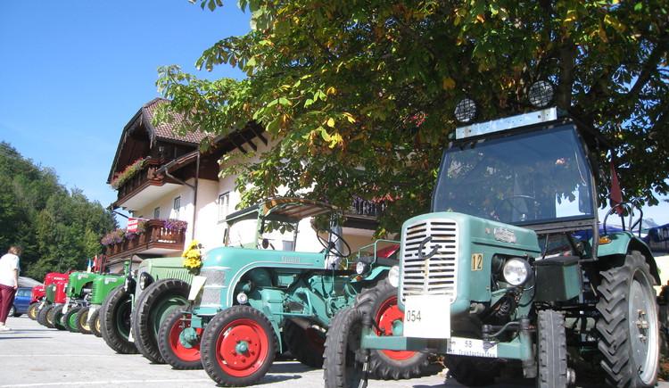 Für jeden Traktor-Liebhaber ist etwas dabei. (© WTG)
