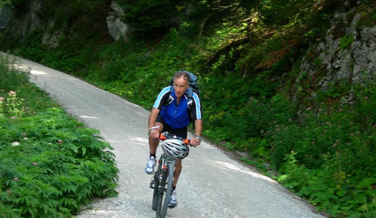 Auffahrt Sonnstein (© Oberösterreich Tourismus / green-solutions)