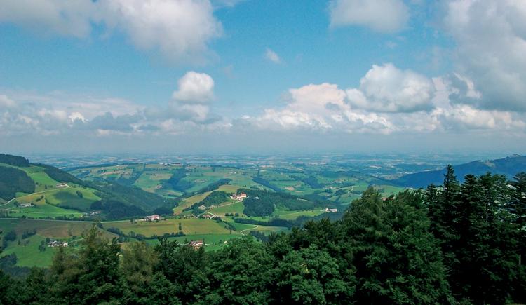 Spindeleben - Gaflenz (© Gemeinde Gaflenz)
