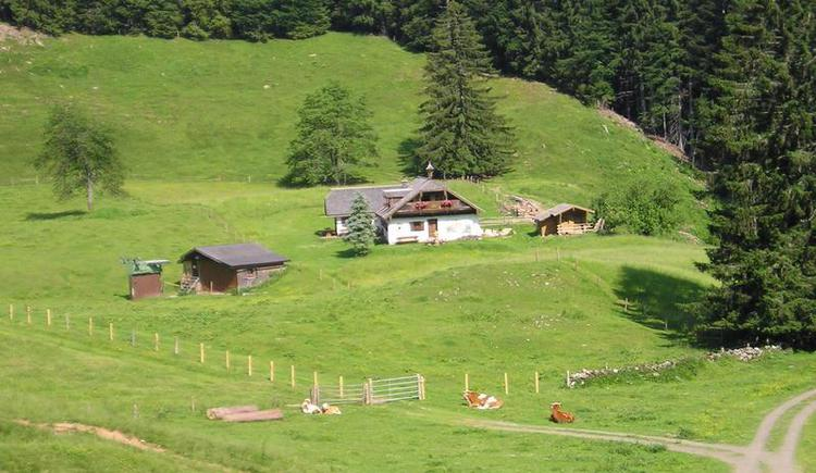 Hut Mittereggalm at the mountain Faistenauer Schafberg (© Mittereggalm)