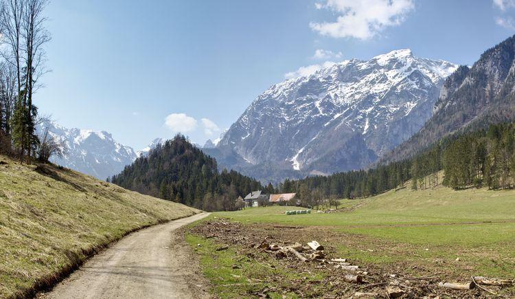 Haistrieglerweg (© TVB Pyhrn-Priel/Sulzbacher)