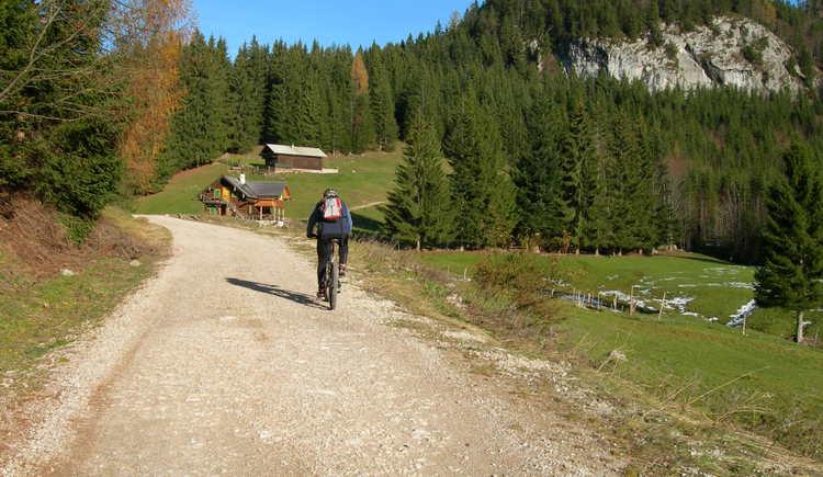 Richtung Hoisnrad (© Oberösterreich Tourismus / green-solutions)