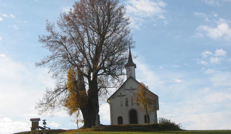 Mühlholzkapelle (© Tourismusverband Lembach i.M.)