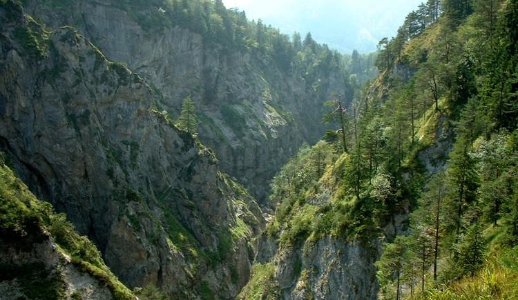 Blick in die Strubklamm (© Tourismusverband Faistenau)