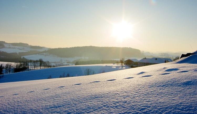 Abendstimmung auf dem Winterwanderweg in Klaffer am Hochficht.