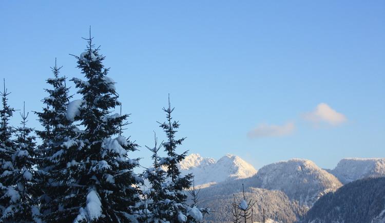 Winteransicht des Berges von der Sonnenseite.