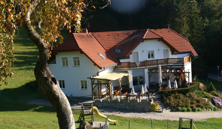 Bockauwirt Freistadt.