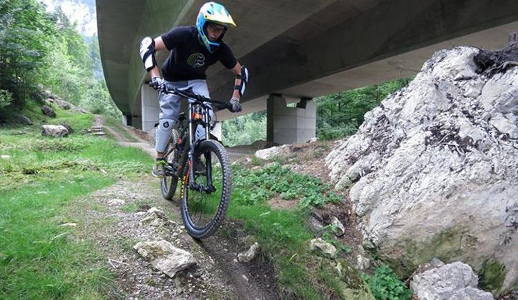 Mountainbike Fahrtechnik & Tourenguiding (© pyhrnPriel-mountainbike e.U.)