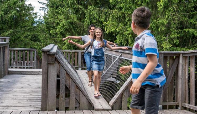 Familien balanciert über Holzsteg (© Baumkronenweg Kopfing, OÖ)