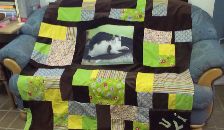 Patchwork-cover with a photo of a cat
