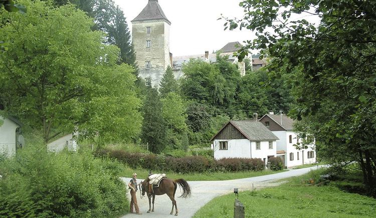 Ruine Reichenstein