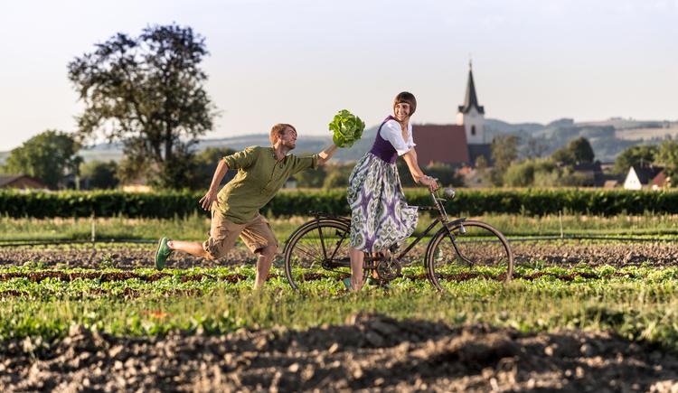 am Salatfeld... (© Manuel Schickermüller)