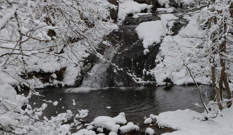 Der Dambach im Winter (© werner mair)