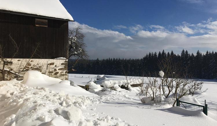 Landschaft im Winter 5 (© Privat)