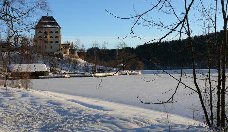 Schloß Fuschl im Winter