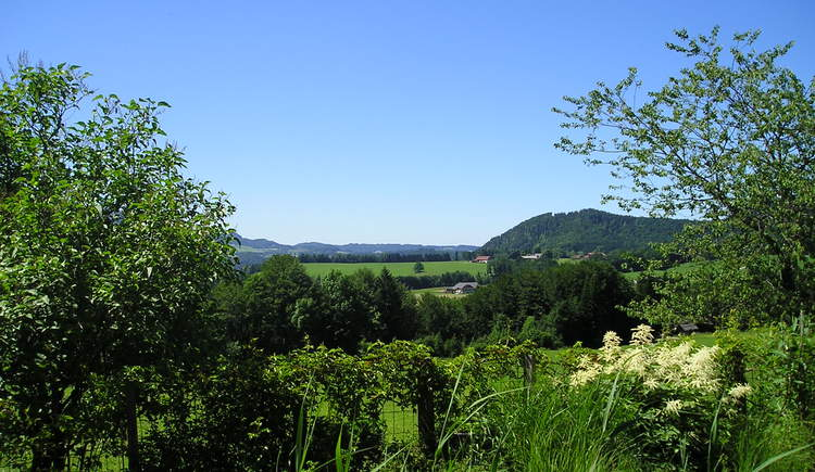 View from the pub garden (© Bramsau Bräu - Fam. Weißenbacher)