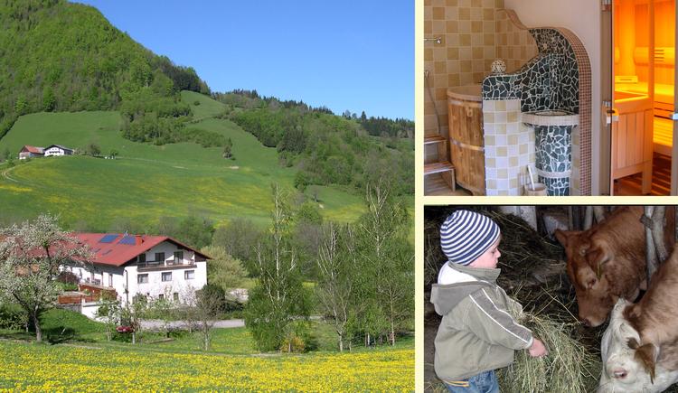 Ferienhof Kleinplettenbach