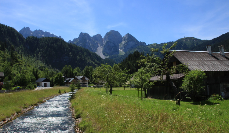 On the Gosaubach trail you have an breathtaking view on the Gosaukamm and the Gosau valley. (© Christopher Unterberger)