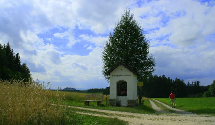 Bergkraeuterwanderweg (© Gemeindeamt Hirschbach)