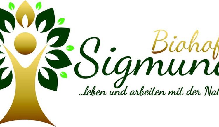 Logo Sigmund (© Sigmund)