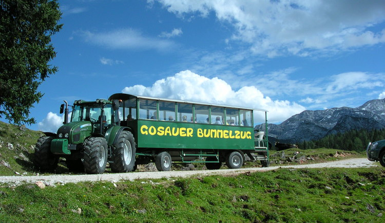 the Gosauer Land Train is a lovely and famous train to the different mountains in Gosau. (© Tourismusverband Inneres Salzkammergut)