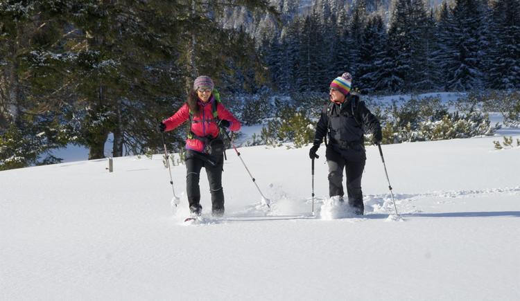 Geführte Schneeschuhwanderung über den Teichlboden (© Maria Felbauer)