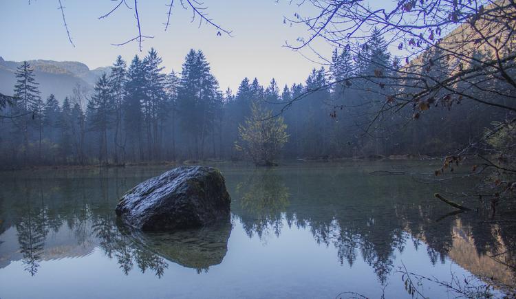 Stein im See. (© Christoph Gasteiger)