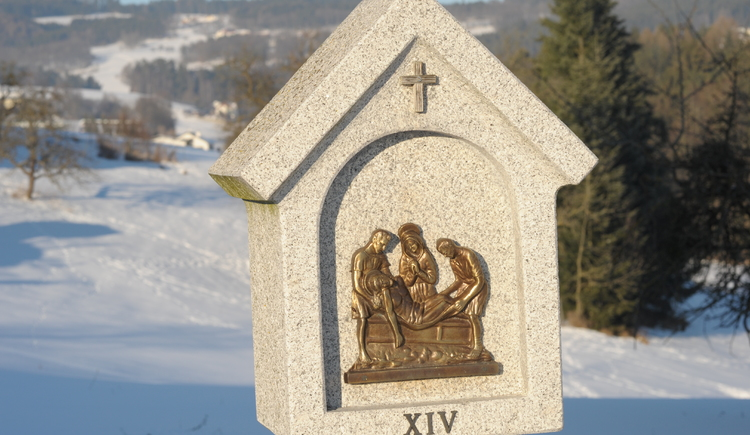 Steinmarterl im Schnee (© Johann Stadler)