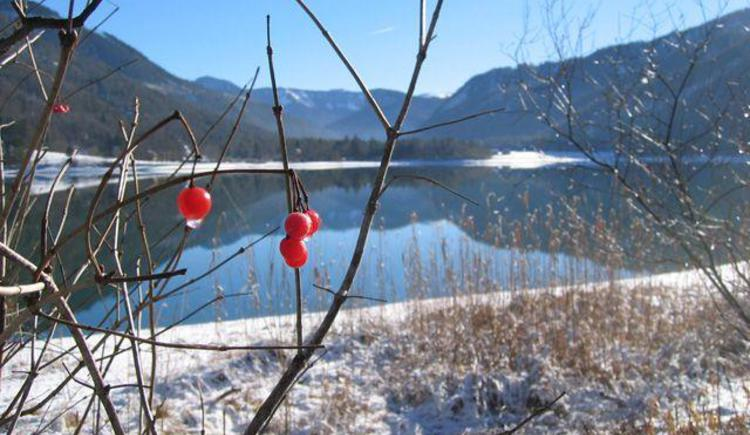 Blick über den verschneiten Hintersee (© Tourismusverband Hintersee)
