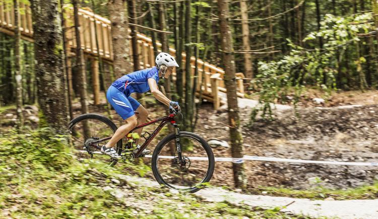 Biker. (© Dachstein Salzkammergut)