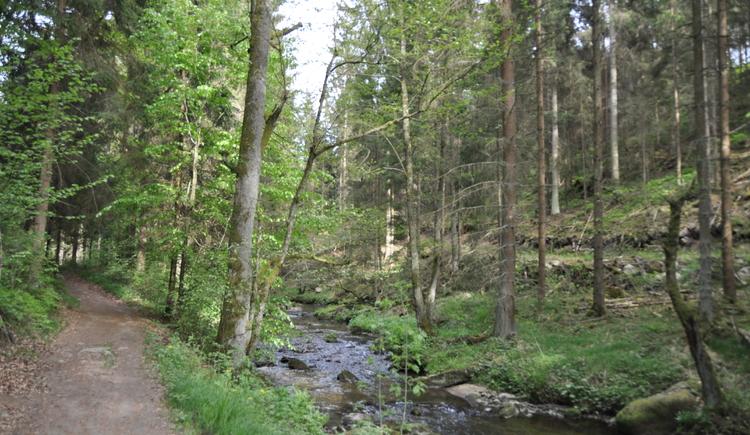 Wanderung im Thurytal an der Feldaist entlang zum Teufelsstein