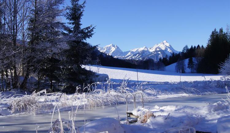 Aussicht im Winter (© Brandtner)