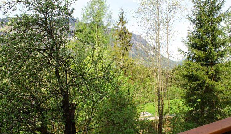 Aussicht Ferienwohnung Schwarzenberg
