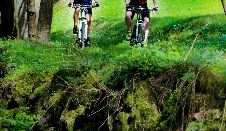 Mountainbiking in der Region Hausruck Nord (© Mühlböck Christoph)
