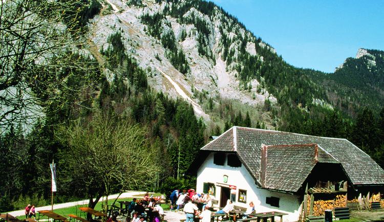 Mairalm.jpeg.jpeg (© Ferienregion Traunsee)