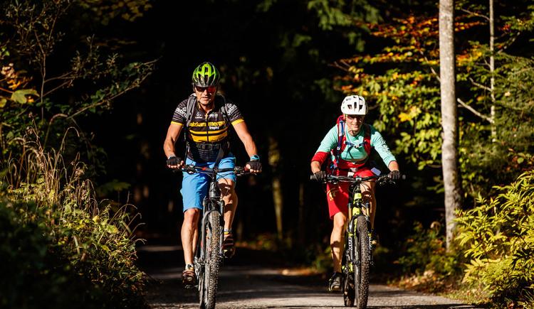 Entspannter Mountainbikegenuss auf den 1 700 km Streckennetz im Salzkammergut. (© bikeboard.at, Erwin Haiden)
