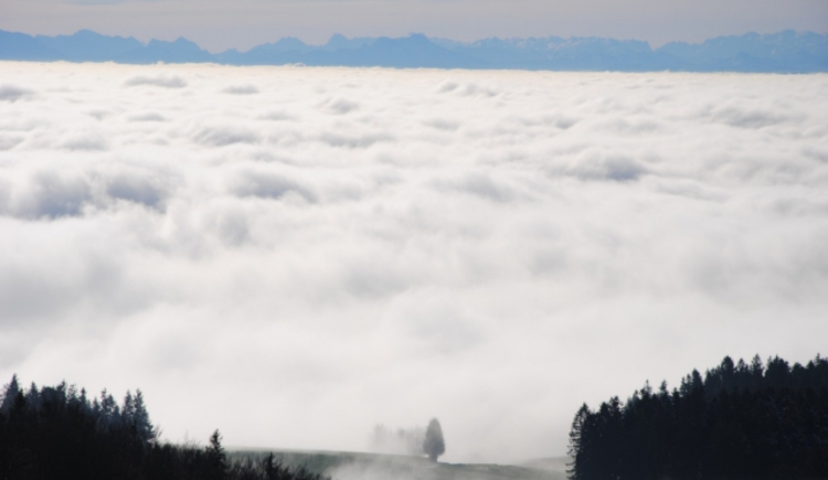 Alpenpanorama. (© TV Pfarrkirchen)