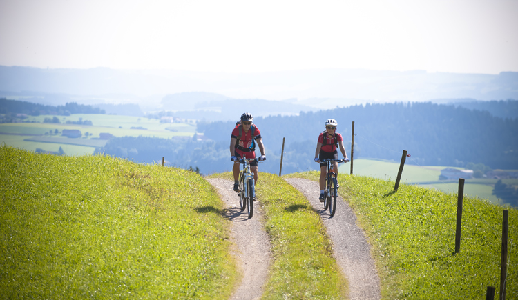 Fernblick Radroute. (© OÖ-Tourismus Erber)