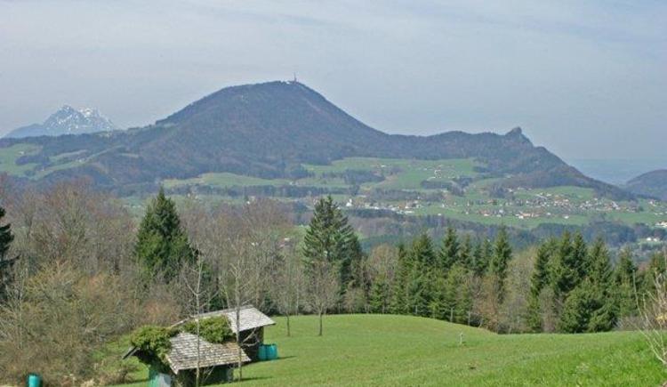 Blick Richtung Gaisberg