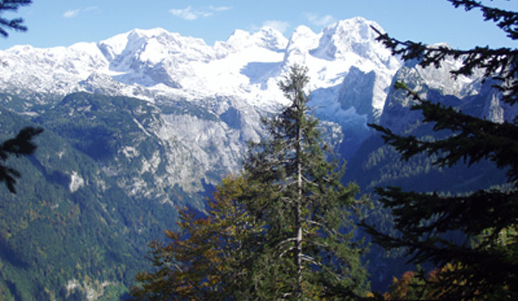 Ausblick von der Zwieselalm auf den Dachstein.