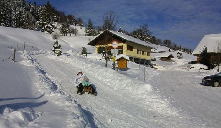 Snowy landscape. People sledging