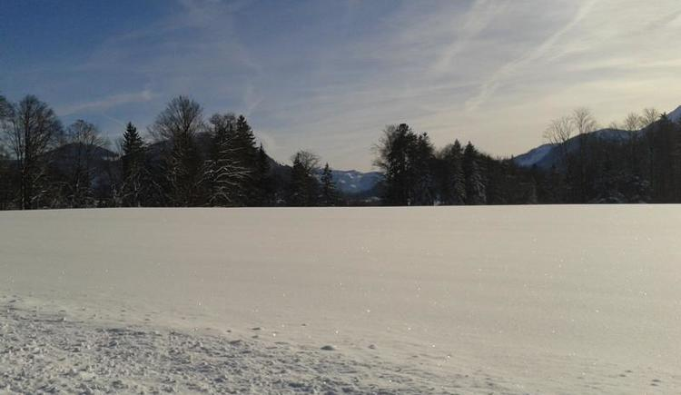 Winterlandschaft vor dem Haus (© Elisabeth Wörndl)