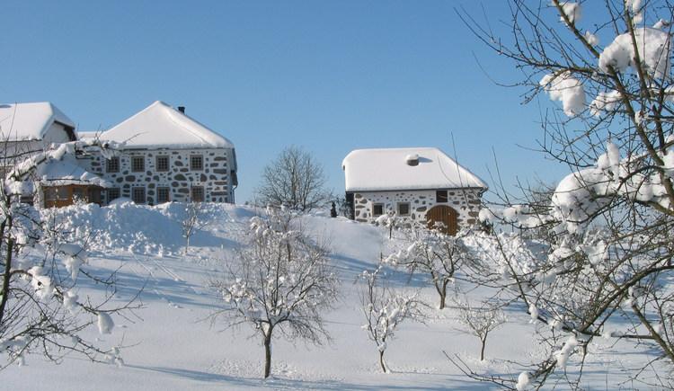 Winter in Pierbach (© Mühlviertler Alm)